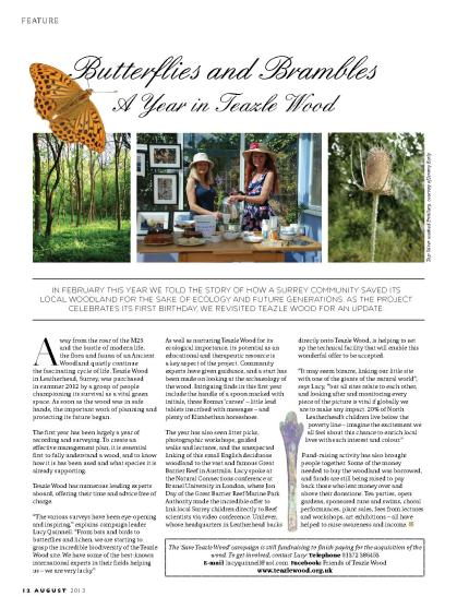 Butterflies & Brambles, a year in Teazle Wood 2013