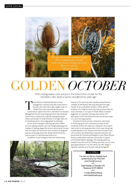 Golden October, Love Local, October 2014