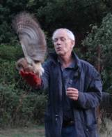 tawny owl release